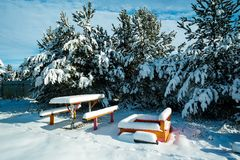 Benches with table in the snow. Beautiful winter landscape with snow covered trees and benches Royalty Free Stock Image