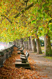 Benches on Thames Embankment Stock Photos