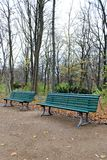 Benches at Tiergarten, Berlin Stock Images