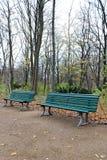 Benches at Tiergarten, Berlin. Tiergarten (German for Animal Garden) is a large park in the centre of Berlin Stock Images