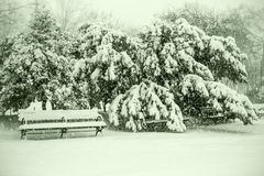 Benches and tree branches under heavy snow Royalty Free Stock Image