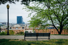 Benches, tree and view from Federal Hill Park, in Baltimore, Mar royalty free stock photography