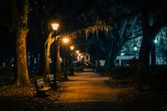 Benches and trees with Spanish moss along a walkway at night, at Forsyth Park, in Savannah, Georgia stock image