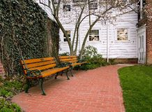 Benches With a View. Two benches on a brick pathway under a magnolia tree royalty free stock photography