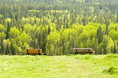 Benches with a view Stock Image