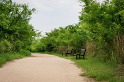 Benches in a walkway alley surrounded by trees and bushes stock photography
