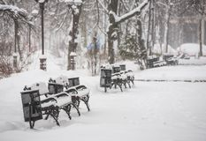 Benches in the winter city park Stock Images
