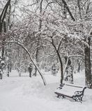 Benches in the winter city park Royalty Free Stock Photo