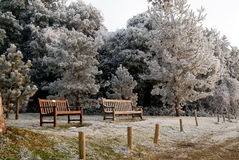 Benches in winter in the English countryside Stock Images