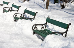 Benches in winter - RAW format. Old benches in winter in a park in Bucharest stock image