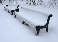 Benches in winter park Royalty Free Stock Photo