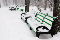 Benches in the winter park Royalty Free Stock Images