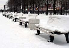 Benches in winter park. Benches covered with snow in winter park Royalty Free Stock Image