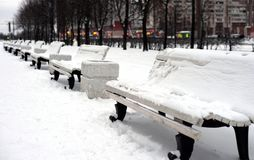 Benches in winter park. Benches covered with snow in winter park Stock Images