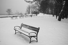 Benches in the winter scenery. stock image