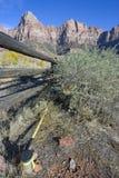 Benchmark gefunden Zion im Nationalpark Lizenzfreie Stockbilder