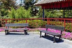 Benchs de madeira do parque exteriores fotos de stock