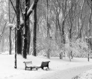 Benchs en nieve en parque Fotos de archivo