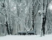 Benchs en parque del invierno Foto de archivo libre de regalías
