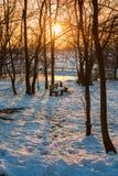 Benchs en parques nevosos Foto de archivo