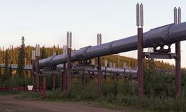 Bend in the Alaskan Pipeline in the predawn of the solstice royalty free stock photos