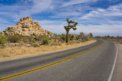 Bend in Joshua Tree Road Royalty Free Stock Photos