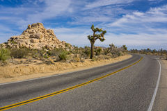 Bend in Joshua Tree Road Royalty Free Stock Image