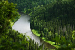 Bend of the mountain river in woodland in Siberia. Bend of the mountain river in woodland in the Urals, coniferous wood Stock Image