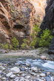 A Bend in the Narrows Royalty Free Stock Photography