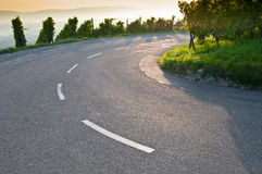Bend on a road. In a German vineyard royalty free stock photography