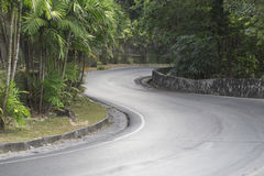 The bend in the road from the mountain. The bend in the road Stock Image