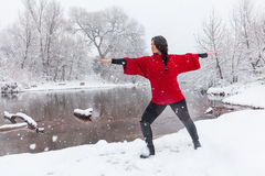Übendes Yoga im Schnee Stockfotografie