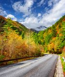 Bending road among colorful fall woods. Scenic autumn landscape royalty free stock photo