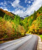 Bending road among colorful fall woods. Scenic mountains in fog royalty free stock image