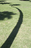 The bends. Shadow of a bent palm tree Royalty Free Stock Image