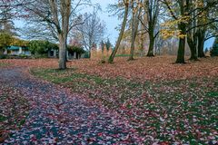 Bendy path in fall. Dark path winding up a hill towards a overgrown structure, covered in brightly colored leaves Royalty Free Stock Image
