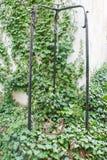 Bene arco in cortile di vecchia casa immagine stock