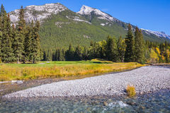 Beneaped stream with a pebbly bottom. Magnificent valley in Banff National Park. Beneaped autumn stream with a pebbly bottom flows among the mountains and pine Royalty Free Stock Photography