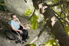 beneath horizontal tree wheelchair woman Στοκ Εικόνες