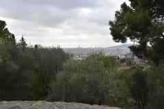 Barcelona Skyline. Beneath the trees in Barcelona overlooking the skyline stock photos