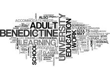 Benedictine University Tops Out As America S Best Online College Word Cloud Royalty Free Stock Image