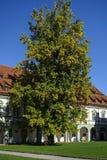 Benediktbeuern, monasterio Imagen de archivo libre de regalías
