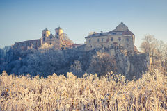 Benediktinerabtei in Tyniec Stockbild