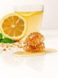 Benefícios de saúde provados de Ginger Can Treat Many Forms da náusea, especialmente doença de manhã? Ginger Contains que uma sub Foto de Stock