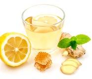 Benefícios de saúde provados de Ginger Can Treat Many Forms da náusea, especialmente doença de manhã? Ginger Contains que uma sub Fotografia de Stock Royalty Free