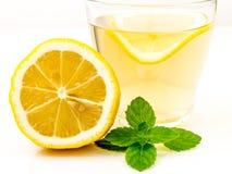 Benefícios de saúde provados de Ginger Can Treat Many Forms da náusea, especialmente doença de manhã? Ginger Contains que uma sub Fotografia de Stock