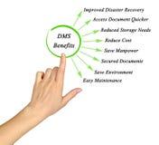 Benefícios do DMS fotos de stock
