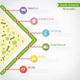 Benefici del infographics dei batteri Fotografie Stock Libere da Diritti