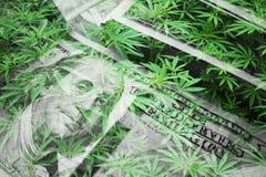 Beneficios de la industria del cáñamo con las hojas de la marijuana con los centenares de alta calidad fotos de archivo libres de regalías