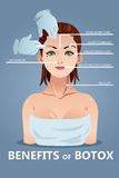 Benefits of Botox. A vector illustration of benefits for botox infographic Royalty Free Stock Photos